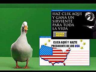 Pato Willix Publicidad